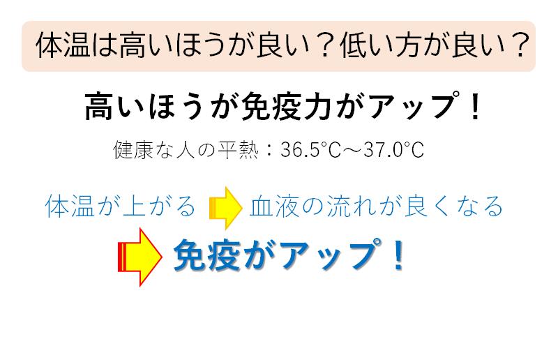 泉さんスライド③.png